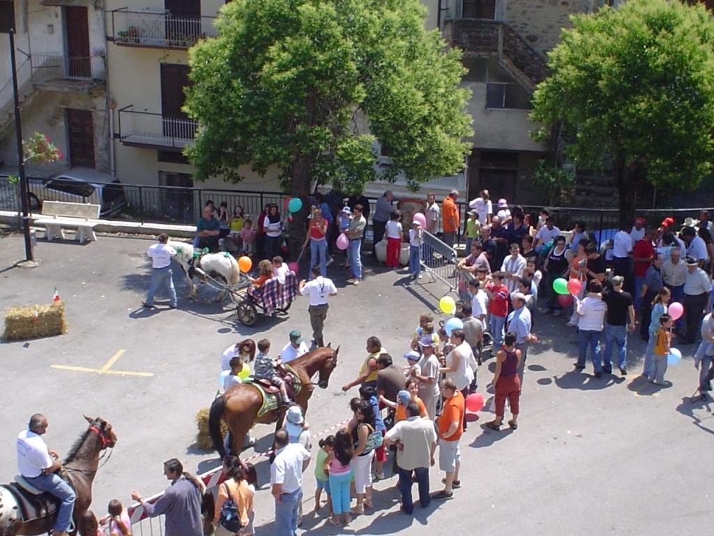 1214129372_giostra con i cavalli